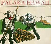 パラカハワイ ロゴ